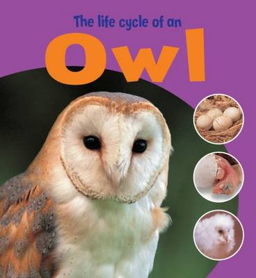 Learning About Life Cycles: The Life Cycle of an Owl by Ruth Thomson