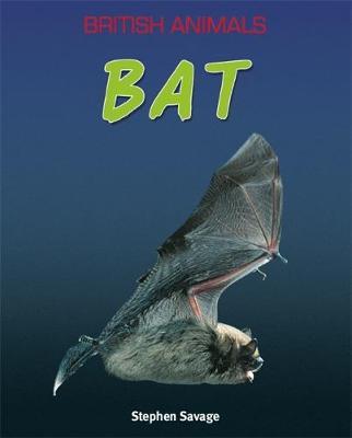 British Animals: Bat by Stephen Savage
