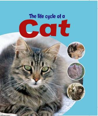 Learning About Life Cycles: The Life Cycle of A Cat by Ruth Thomson
