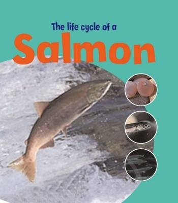 Learning About Life Cycles: The Life Of A Salmon by Ruth Thomson