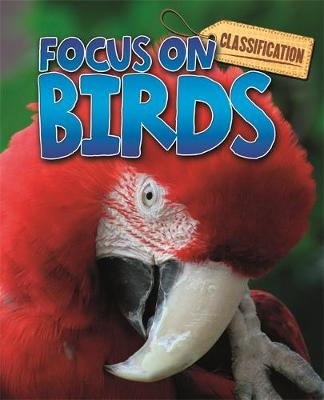 Classification: Focus on: Birds by Stephen Savage