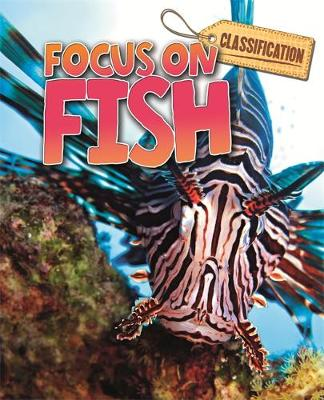Classification: Focus on: Fish by Stephen Savage