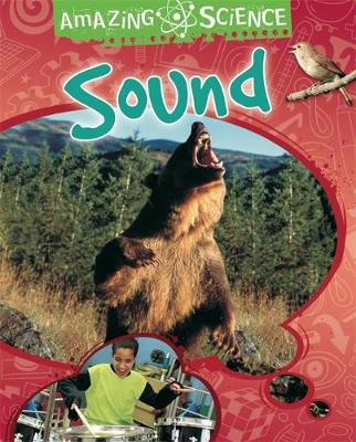 Amazing Science: Sound by Sally Hewitt