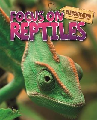 Classification: Focus on: Reptiles by Stephen Savage