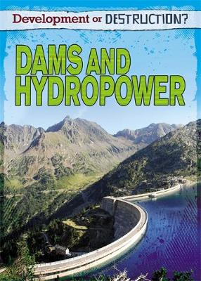 Development or Destruction?: Dams and Hydropower by Louise Spilsbury