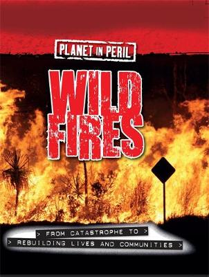Planet in Peril: Wild Fires by Cath Senker