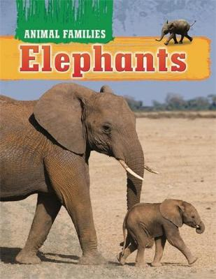 Animal Families: Elephants by Hachette Children's Books, Tim Harris