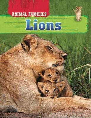Animal Families: Lions by Hachette Children's Books, Tim Harris