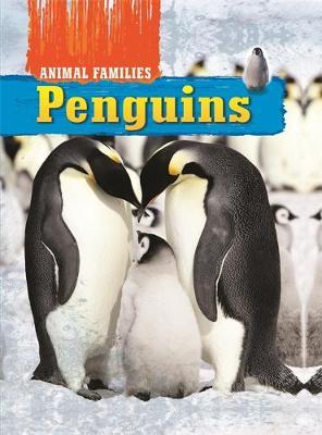 Animal Families: Penguins by Hachette Children's Books, Tim Harris