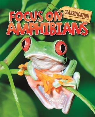 Classification: Focus on: Amphibians by Stephen Savage