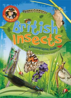Nature Detective: British Insects by Victoria Munson