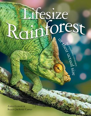 Lifesize Rainforest by Anita Ganeri
