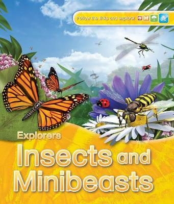 Explorers: Insects and Minibeasts by Jinny Johnson