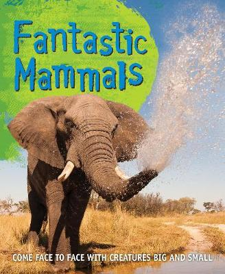 Fast Facts! Fantastic Mammals by Kingfisher