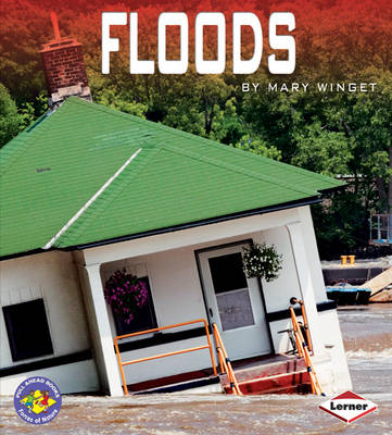 Floods by Mary Winget