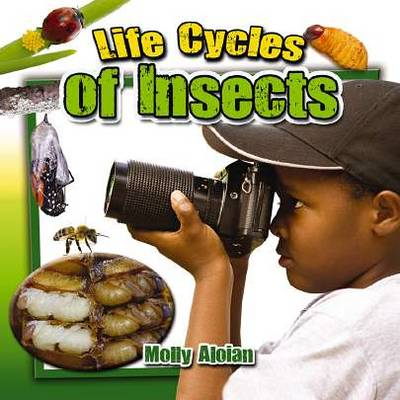 Life Cycle of Insects by Molly Aloian
