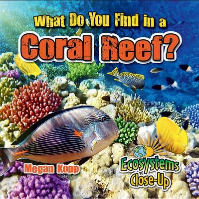 What Do You Find in a Coral Reef? by Megan Kopp