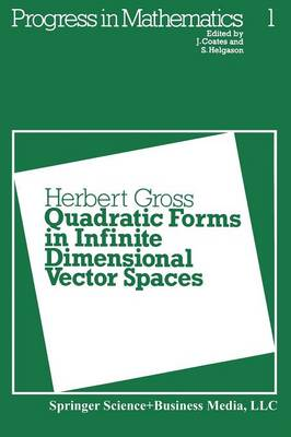 Quadratic Forms in Infinite Dimensional Vector Spaces by H. Gross