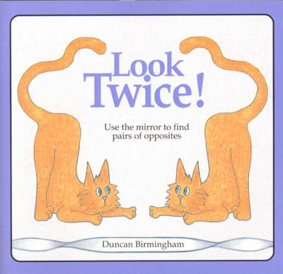 Look Twice Use the Mirror to Find Pairs of Opposites by Duncan Birmingham