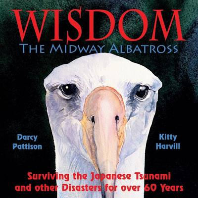 Wisdom, the Midway Albatross Surviving the Japanese Tsunami and Other Disasters for Over 60 Years by Darcy Pattison