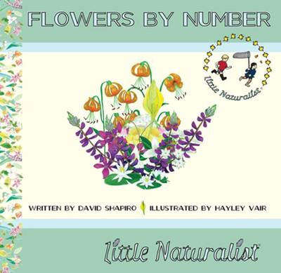 Flowers by Number by David R. Shapiro