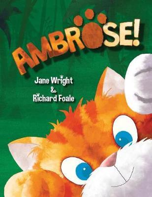 Ambrose by Jane (Senior Lecturer in Specialist Community Public Health Nursing Buckinghamshire New University Buckinghamshire UK) Wright