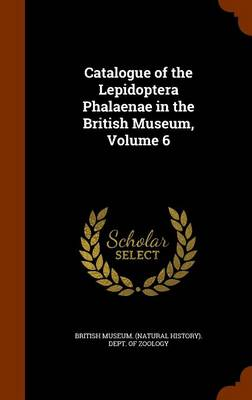 Catalogue of the Lepidoptera Phalaenae in the British Museum, Volume 6 by British Museum (Natural History) Dept