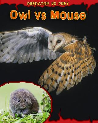 Owl vs Mouse by Mary Meinking