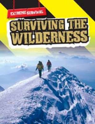 Surviving in the Wilderness by Michael Hurley
