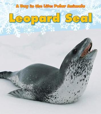 Leopard Seal by Katie Marsico