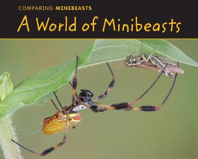 A World of Minibeasts by Charlotte Guillain