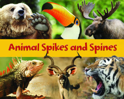 Animal Spikes and Spines by Rebecca Rissman