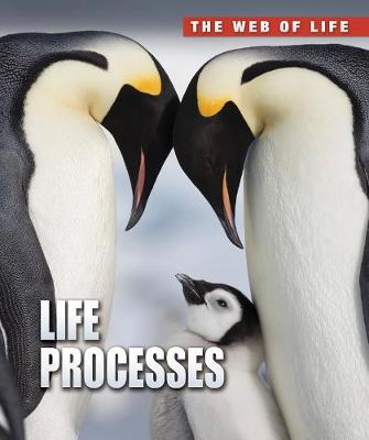 Life Processes by Anna Claybourne