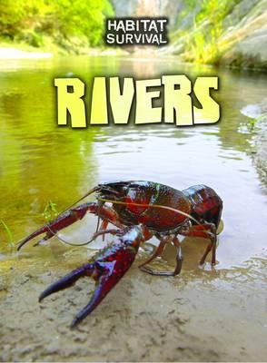 Rivers by Melanie Waldron