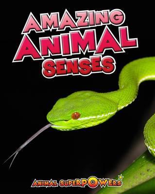 Amazing Animal Senses by John Townsend