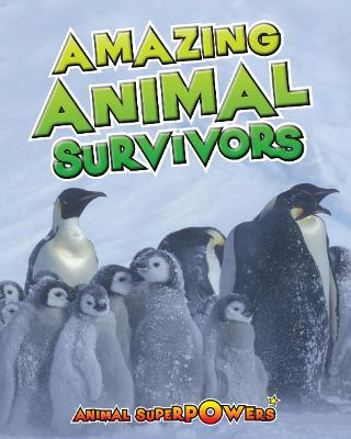 Amazing Animal Survivors by John Townsend