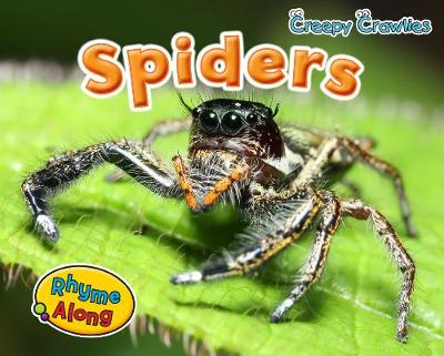 Spiders by Sian Smith