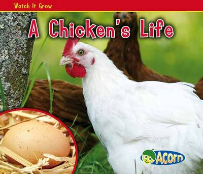 A Chicken's Life by Nancy Dickmann