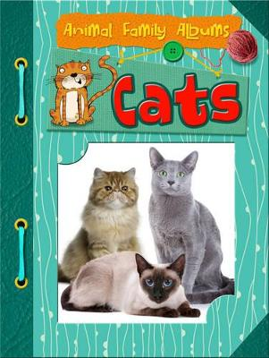 Cats by Charlotte Guillain