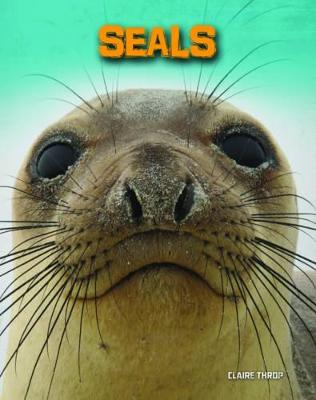 Seals by Claire Throp