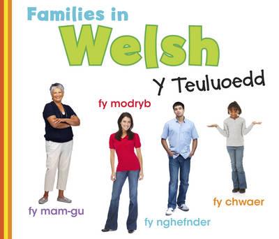 Families in Welsh: Y Teuluoedd by Daniel Nunn