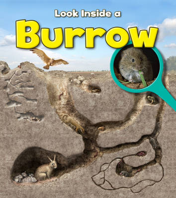 Burrow by Richard Spilsbury
