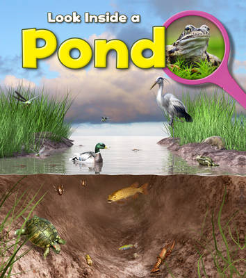 Pond by Louise Spilsbury