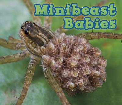 Minibeast Babies by Catherine Veitch