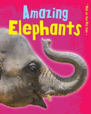 Amazing Elephants by Charlotte Guillain