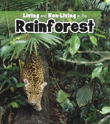 Living and Non-living in the Rainforest by Rebecca Rissman