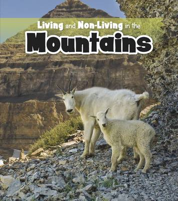 Living and Non-living in the Mountains by Rebecca Rissman