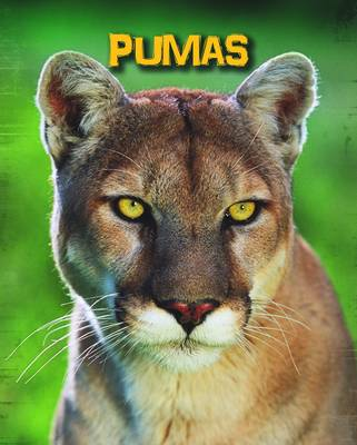 Pumas by Charlotte Guillain
