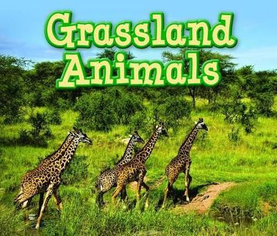 Grassland Animals by Sian Smith