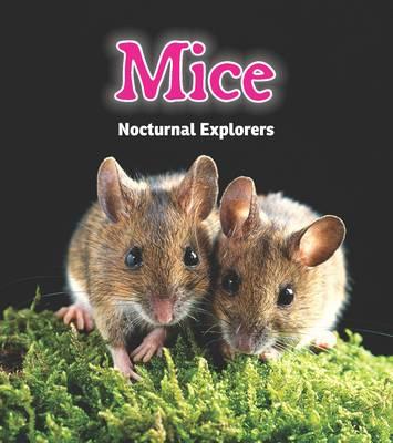 Mice Nocturnal Explorers by Rebecca Rissman